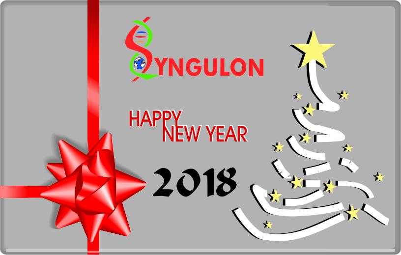 Syngulon Season's Greetings 2018